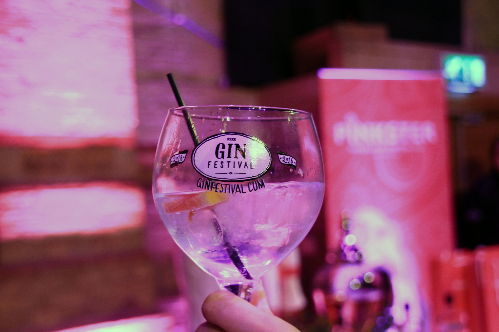 Gin Festival Glass 2016