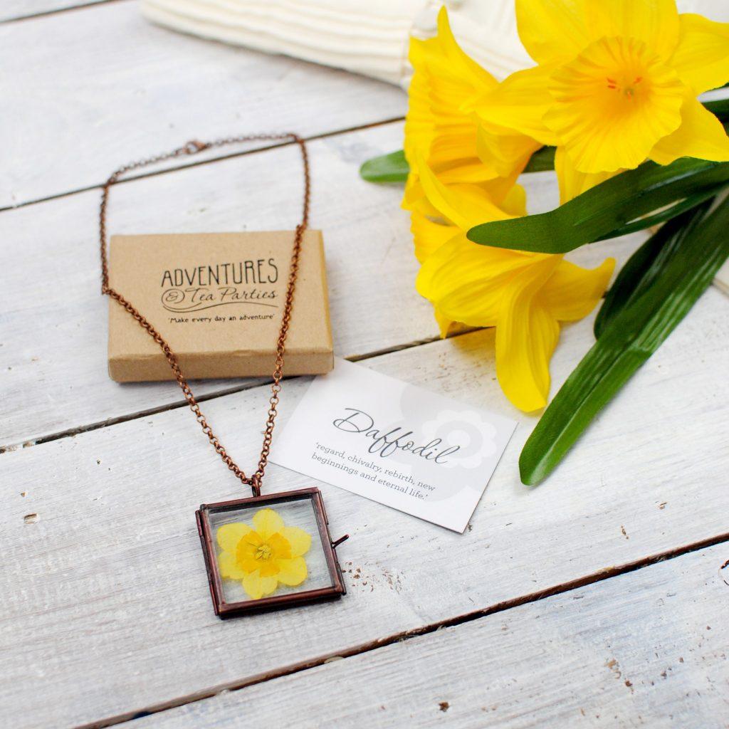 daffodil_003